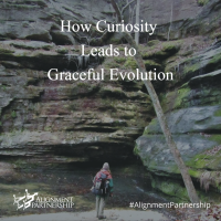 How Curiosity Leads to Graceful Evolution